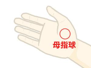 母指球 ツボ